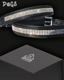 Diamond Crystal Designer Dog Collar