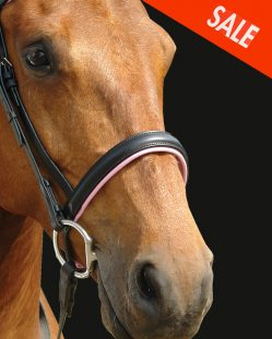 English Noseband Pink Padding