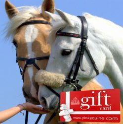 Gift Card Beautiful Horse Pair