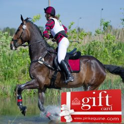 Gift Card Horse Eventing Burgundy