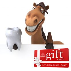 Gift Card Horse Dentist