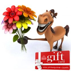Gift Card Horse Fun Flowers