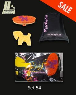 Pony Grooming Kit Orange